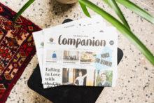 Freunde-von-Freunden-Companion-11-3652