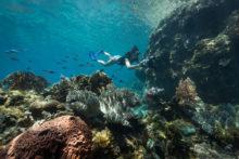 Freunde-von-Freunden-Danielle-Ryan-marine-sanctuary--Limasawa,-Philippines,-April---2017--3