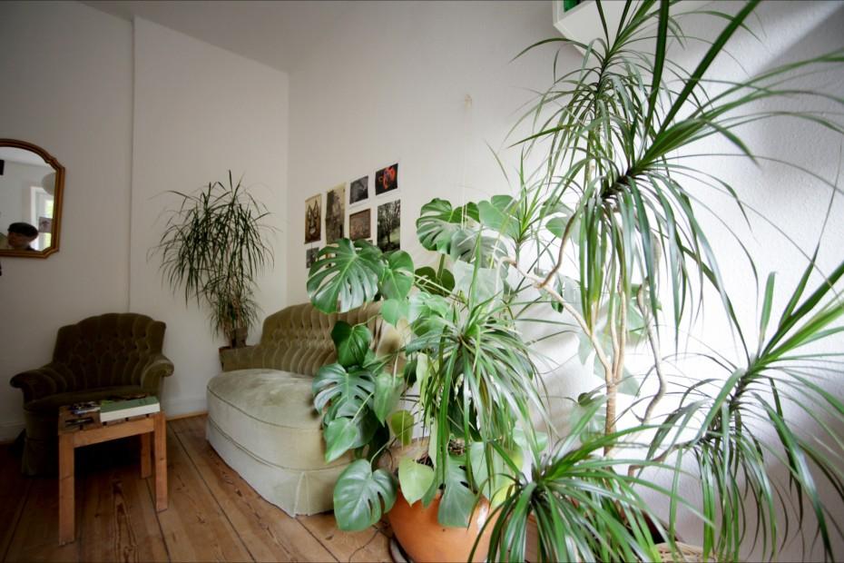 Freunde von Freunden — Dorothee Halbrock — Curator, Apartment, St. Pauli, Hamburg — http://www.freundevonfreunden.com/interviews/dorothee-halbrock/