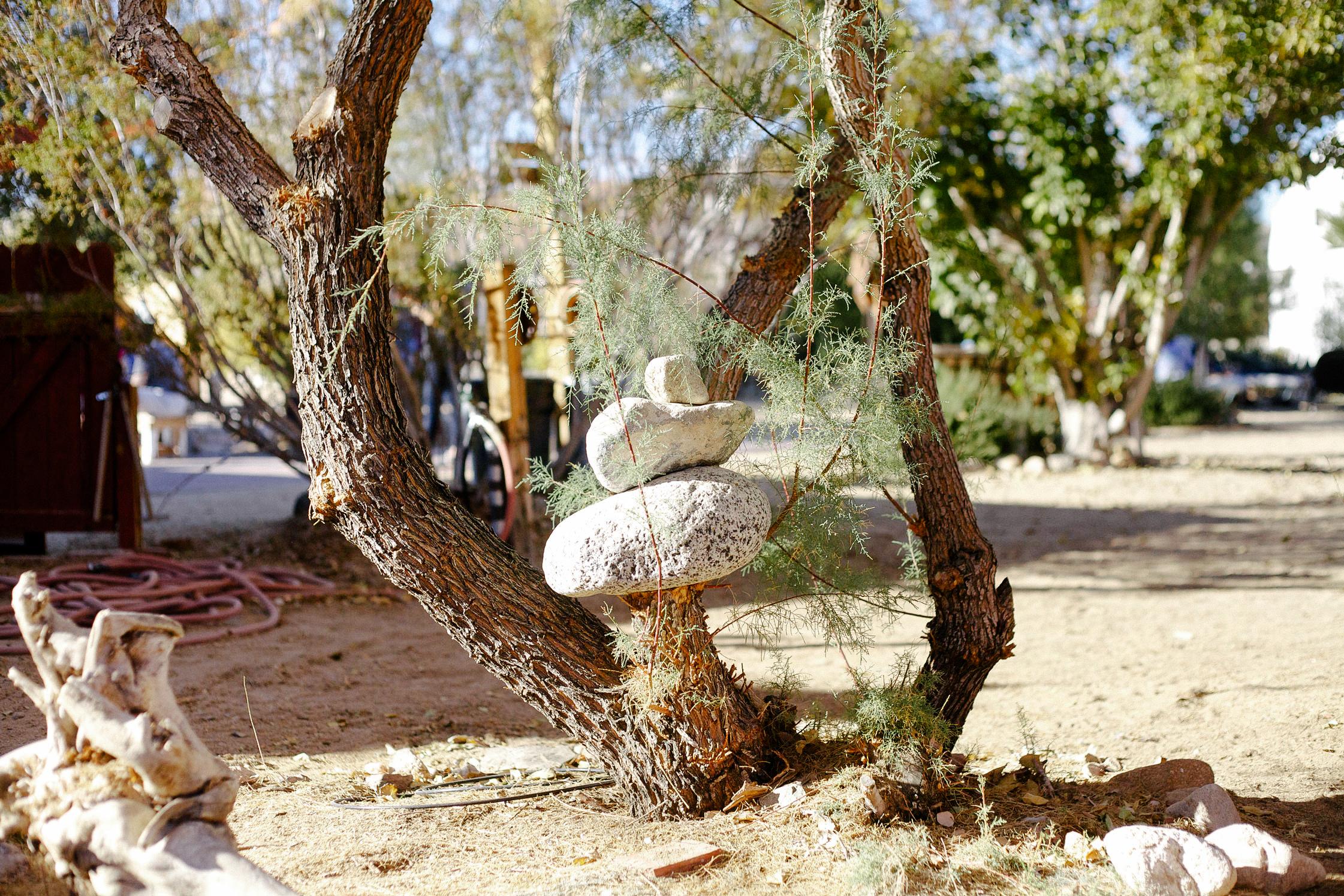 freunde von freunden joshua tree park desert trip claire. Black Bedroom Furniture Sets. Home Design Ideas