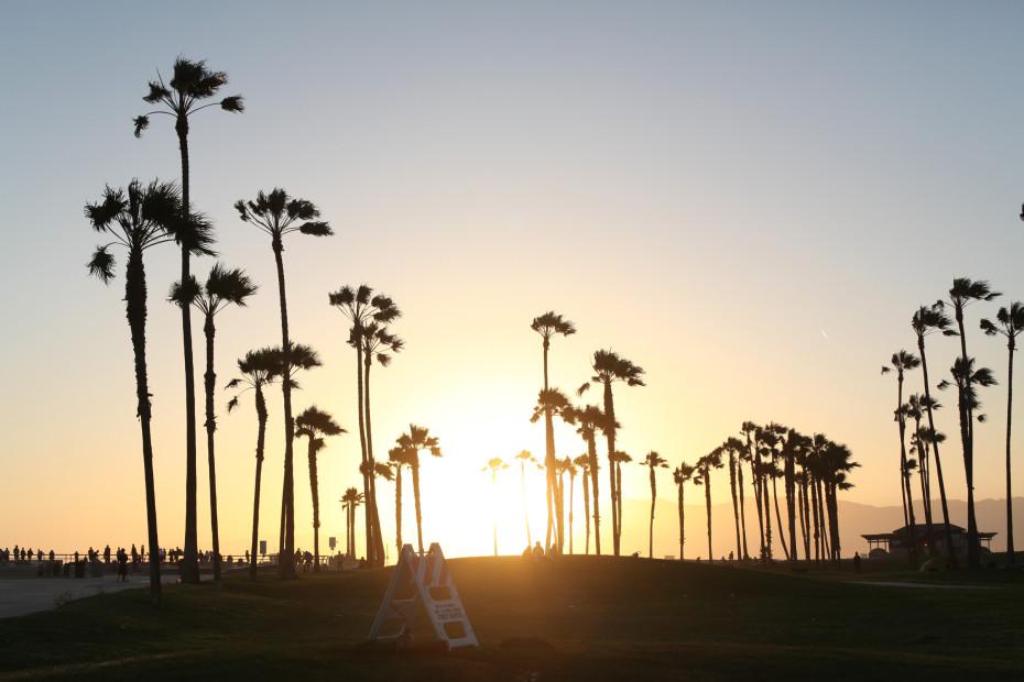 Freunde_von_Freunden_Venice_Beach_Claire_Cottrell_IMG_3074