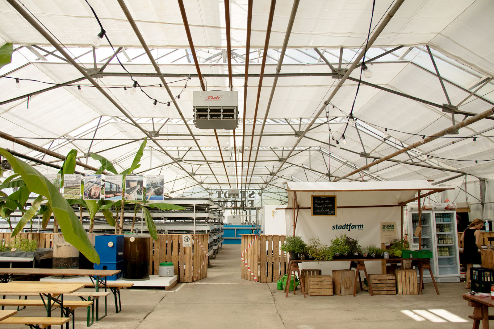 Stadtfarm, Berlin – An inventive urban farming project providing fish, fruit, and vegetables