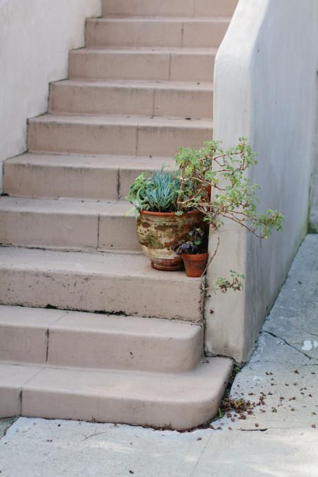 Freunde von Freunden — Naomi Sanders — Landscape Designer, Apartment, Silver Lake, Los Angeles — http://www.freundevonfreunden.com/interviews/naomi-sanders/