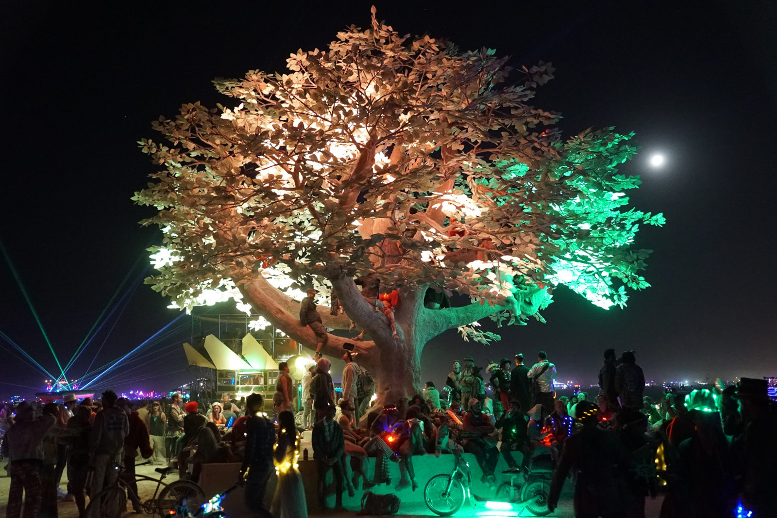 (EN) Tree of Ténéré – 175,000 LEDs illuminate the place once home to the loneliest tree on Earth © Studio Drift