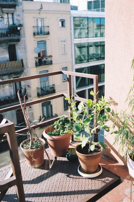 Freunde von Freunden — Xavier Mañosa — Ceramist, Studio & Apartment, Sant Cugat & Poblenou, Barcelona — http://www.freundevonfreunden.com/es/interviews/xavier-manosa/